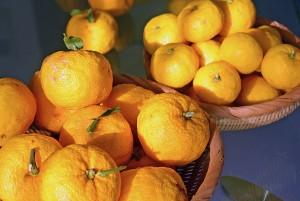 大量の無農薬な柚子