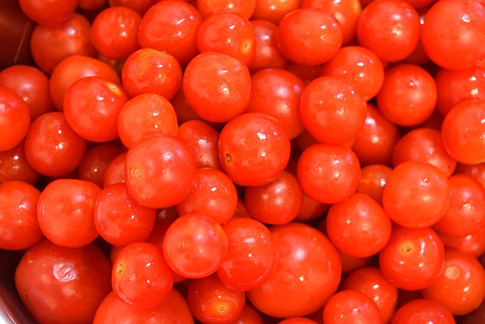 菜園で収穫したミニトマト
