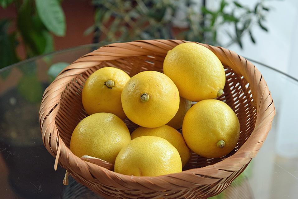 防カビ剤不使用のレモン