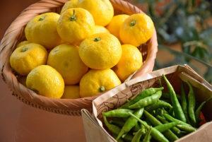 自家製 柚子胡椒