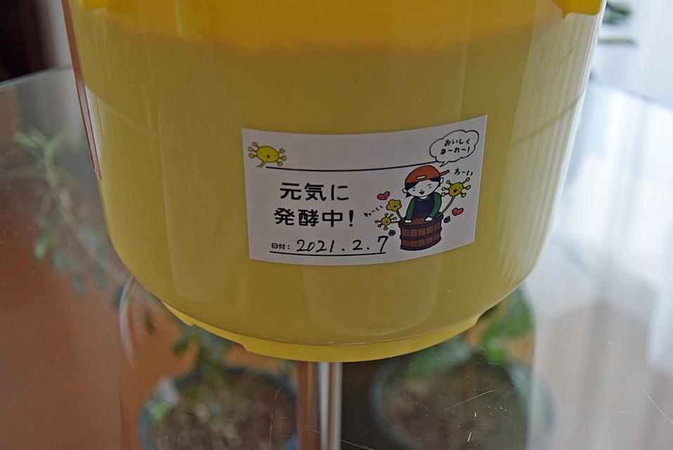 甲州味噌キット
